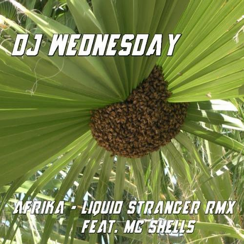 Album Art - Afrika (Liquid Stranger Rmx feat. MC Shells)