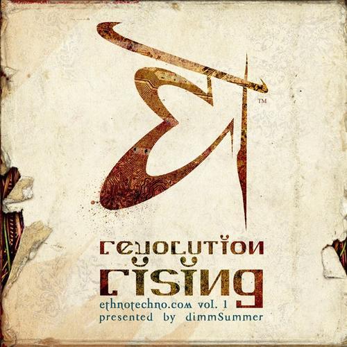 Album Art - Revolution Rising : Volume 1 Presented By Dimmsummer