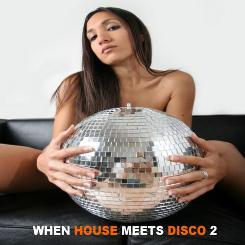 Album Art - When House Meets Disco Volume 2