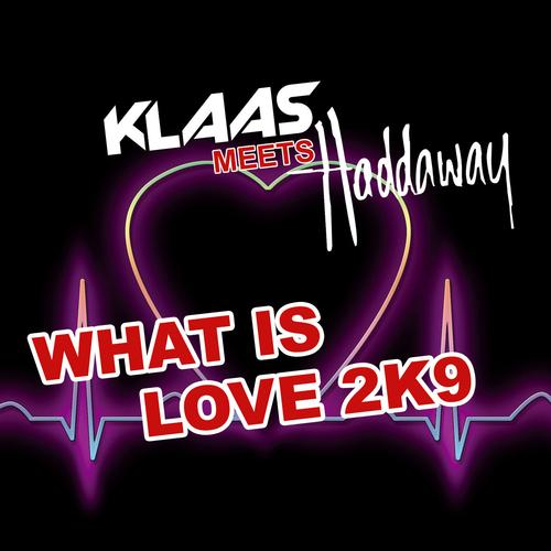 Album Art - What Is Love 2K9