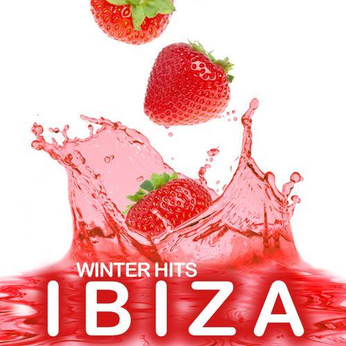 Album Art - Ibiza Winter Hits 2010