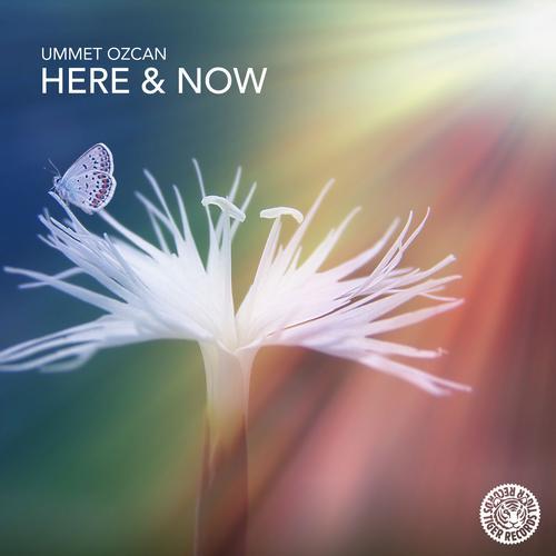 Album Art - Here & Now