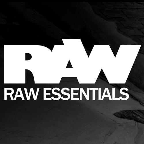 Album Art - Ronald van Gelderen Presents RAW Essentials