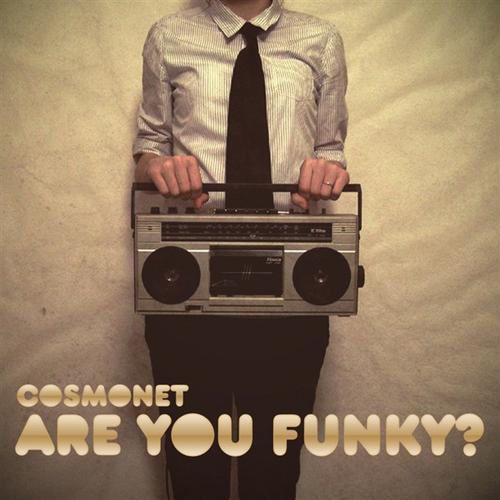 Album Art - Are You Funk?