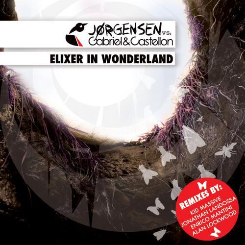 Album Art - Elixer In Wonderland