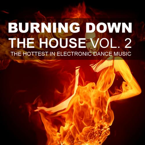 Album Art - Burning Down The House, Volume 2 - The Hottest In Electronic Dance Music