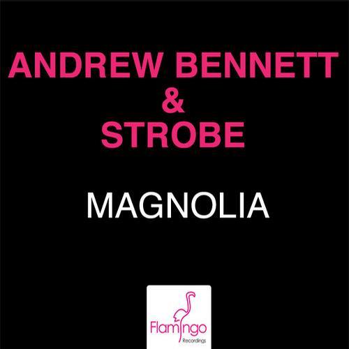 Album Art - Magnolia