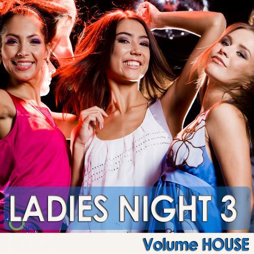 Album Art - Ladies Night 3 - Volume House