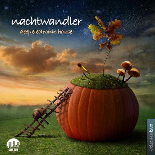 Nachtwandler, Vol. 2 - Deep Electronic House Album Art
