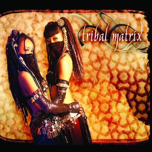 Album Art - Tribal Matrix