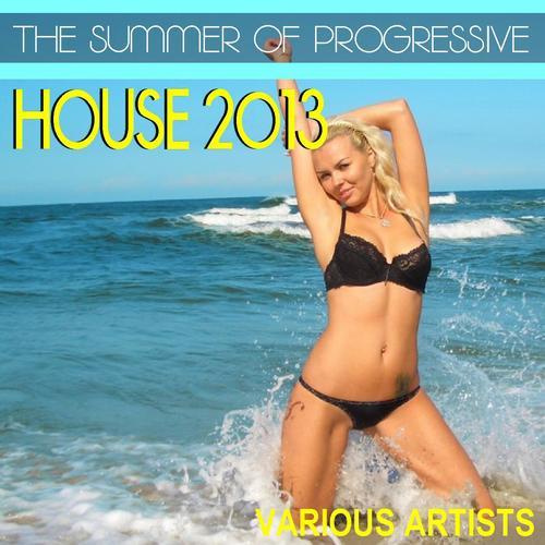 Album Art - The Summer of Progressive House 2013