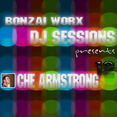 Album Art - Bonzai Worx - DJ Sessions 12