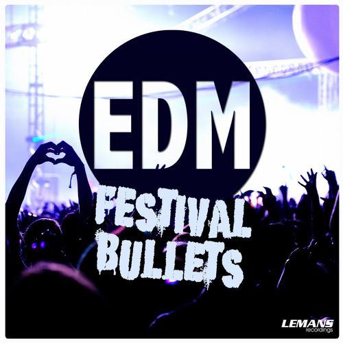 Album Art - EDM Festival Bullets
