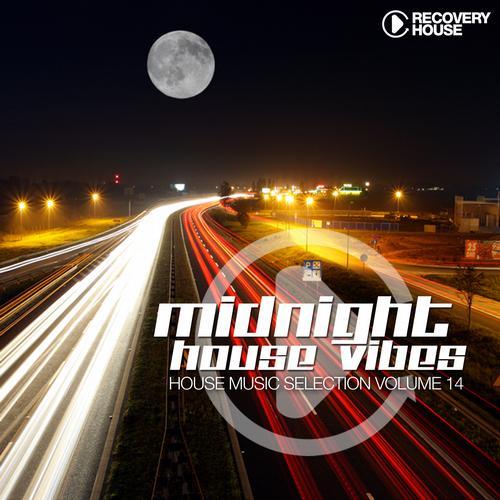Album Art - Midnight House Vibes - Volume 14