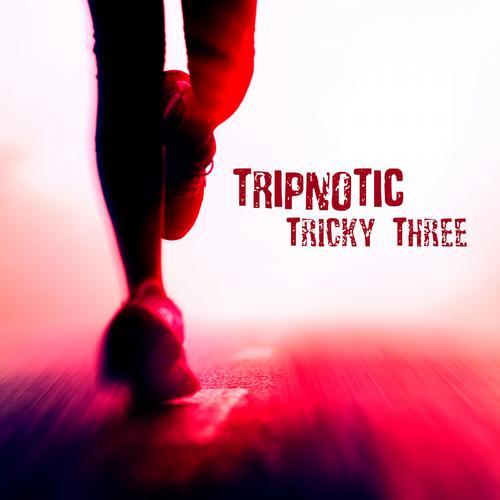 Tricky Three Album Art