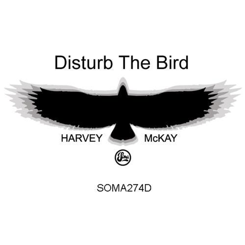Disturb The Bird Album
