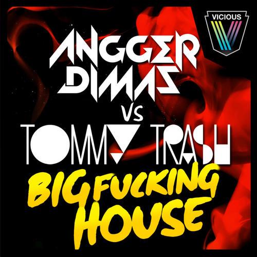 Album Art - Big Fucking House