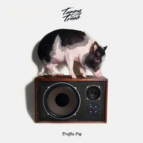Album Art - Truffle Pig