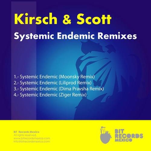 Album Art - Systemic Endemic (Remixes)