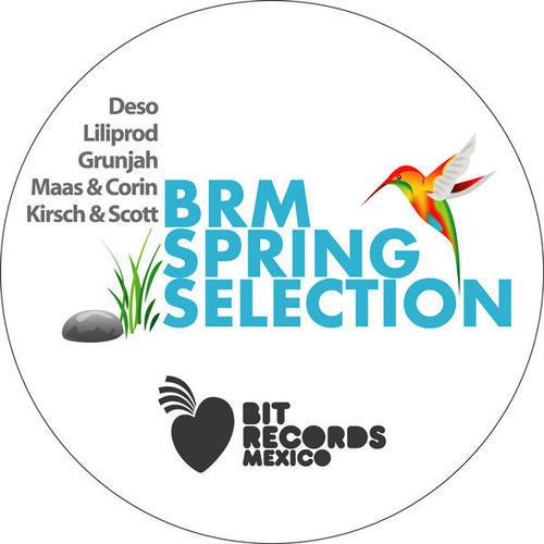 Album Art - BRM Spring Selection 2010