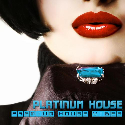 Album Art - Platinum House - Premium House Vibes