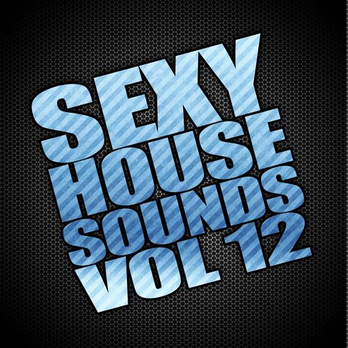 Album Art - Sexy House Sounds, Vol. 12