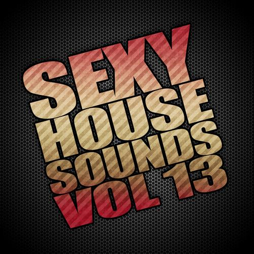 Album Art - Sexy House Sounds, Vol. 13