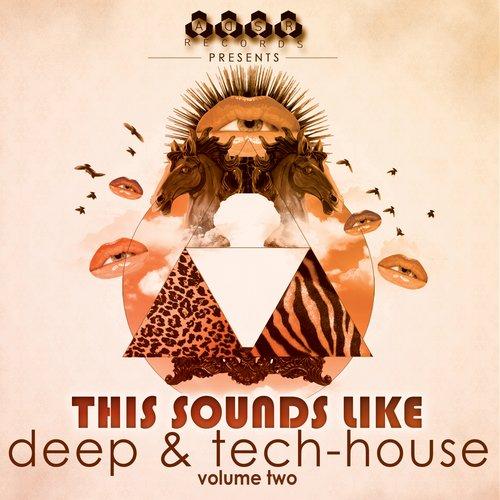 This Sounds Like Deep & Tech-House, Vol. 2 Album Art