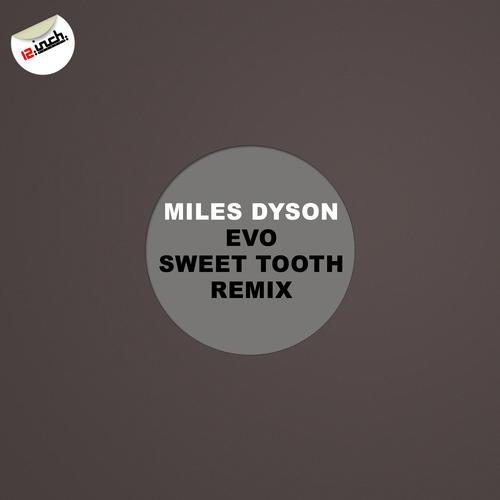 Album Art - Evo Remix