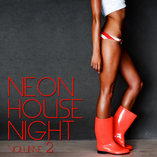Album Art - Neon House Night Vol. 2