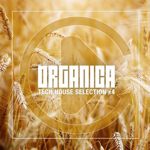 Album Art - Organica #4