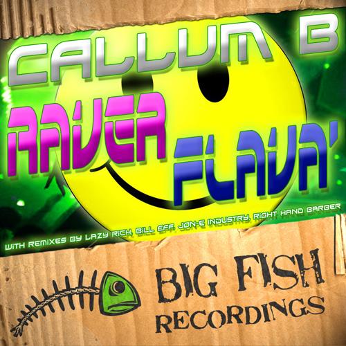 Album Art - Raver Flava'