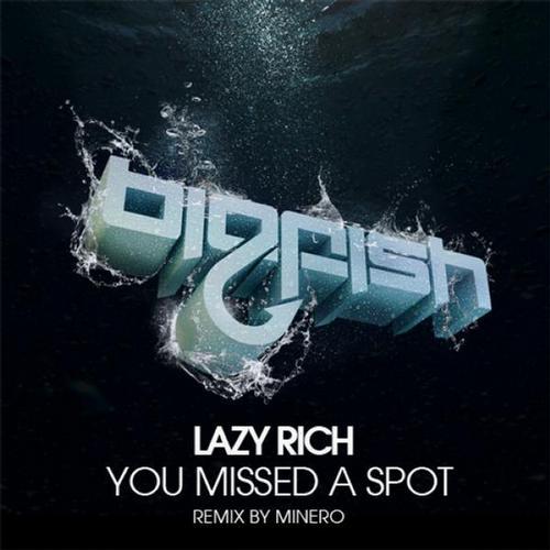 Album Art - You Missed A Spot