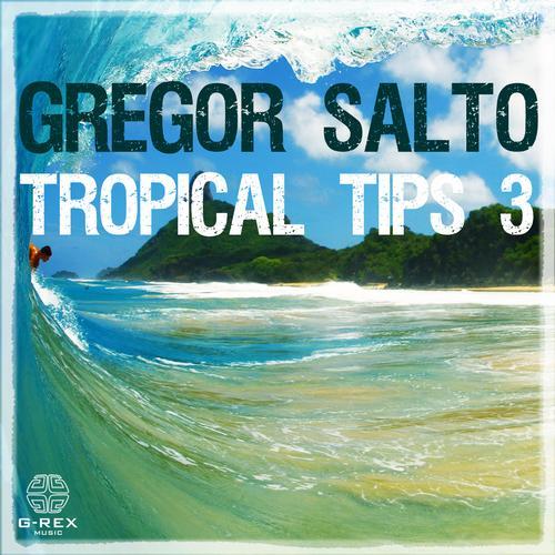 Album Art - Gregor Salto - Tropical Tips 3