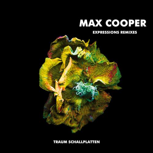 Album Art - Expressions Remixes