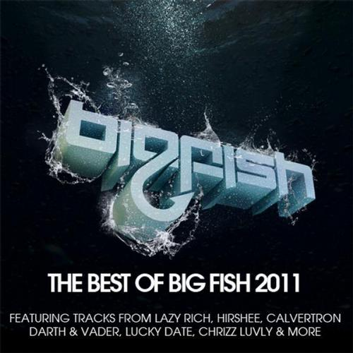Album Art - Best Of Big Fish 2011