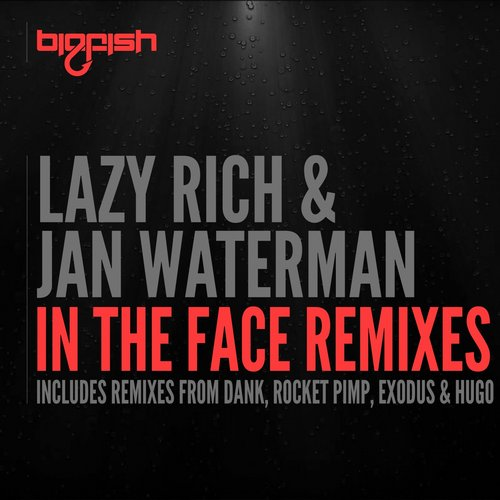 Album Art - In The Face Remixes