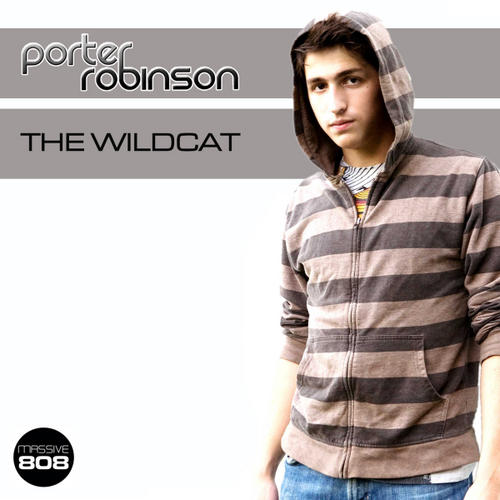Album Art - The Wildcat