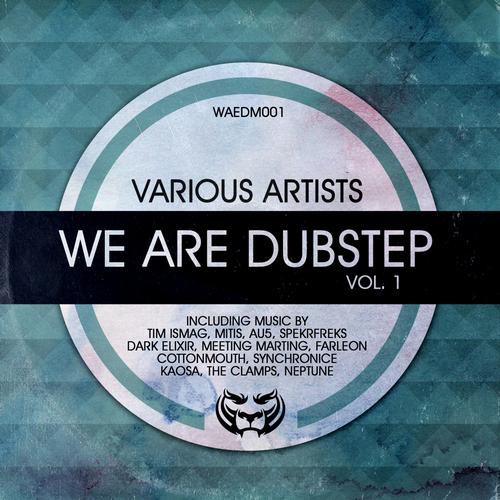 Album Art - We Are Dubstep Vol. 1
