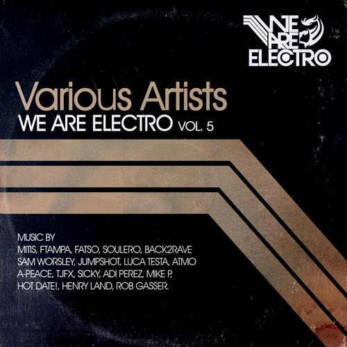Album Art - We Are Electro Vol. 5