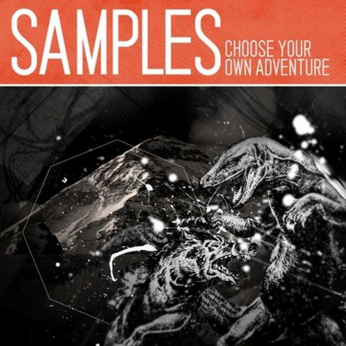 Album Art - Choose Your Own Adventure