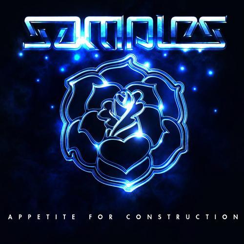 Album Art - Appetite For Construction