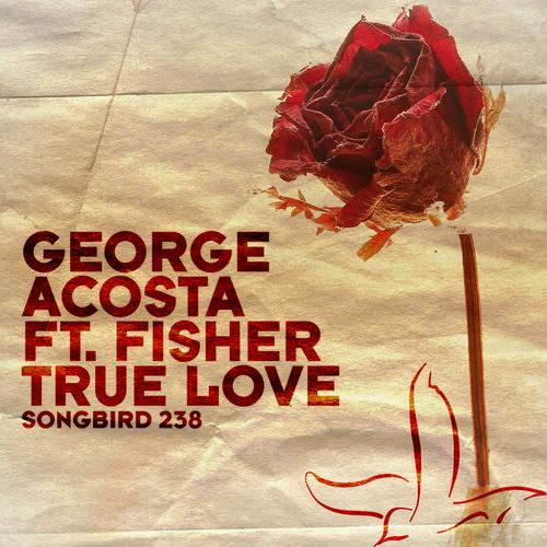 Album Art - True Love