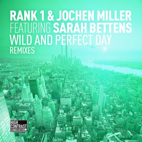 Album Art - Wild and Perfect Day (The Remixes)