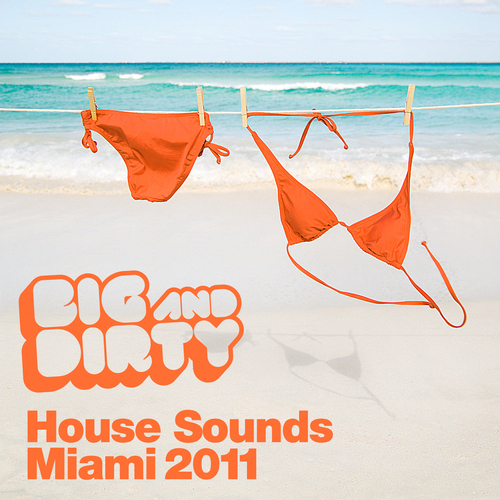 Album Art - Big And Dirty House Sounds Miami 2011