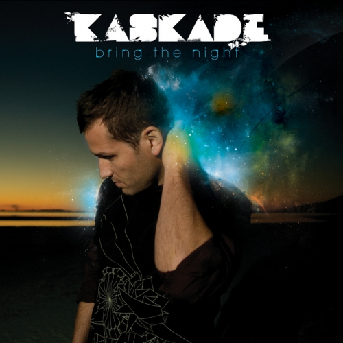 Album Art - Bring The Night