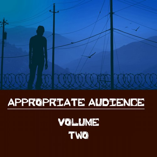 Album Art - Appropriate Audience, Vol. 2