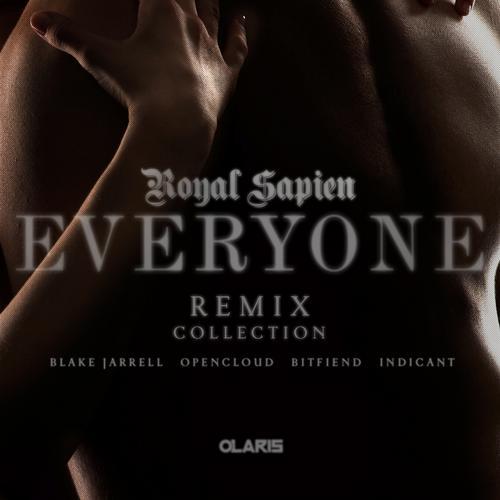 Album Art - Everyone Remixes Collection