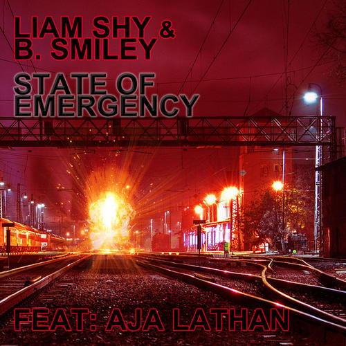 Album Art - State Of Emergency