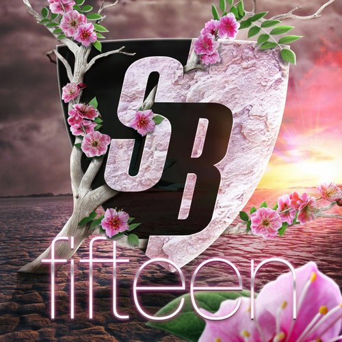 Album Art - Stoney Boy Music - Fifteen